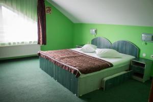Pensiunea Cornelius, Guest houses  Piatra Neamţ - big - 41