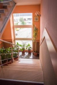 Pensiunea Cornelius, Guest houses  Piatra Neamţ - big - 39