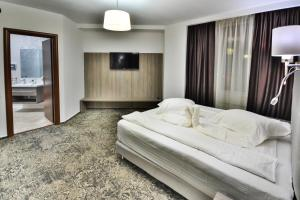 Hotel Europeca, Hotely  Craiova - big - 27