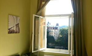 Apartment Fairy Tale, Ferienwohnungen  Karlsbad - big - 23