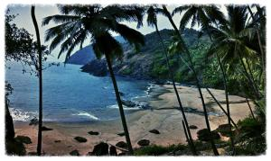 Blue Lagoon Resort Goa, Resorts  Cola - big - 100