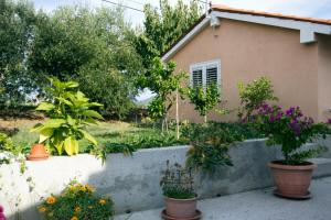 Apartment & Cottage Paliska