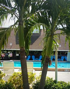 Dolphin Key Resort - Cape Coral, Курортные отели  Кейп-Корал - big - 28
