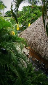 Dolphin Key Resort - Cape Coral, Курортные отели  Кейп-Корал - big - 29