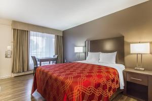 obrázek - Econo Lodge Inn and Suites Lethbridge