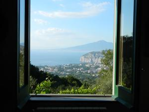 Gli Ulivi Agriturismo, Agriturismi  Sant'Agnello - big - 85
