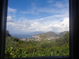 Gli Ulivi Agriturismo, Farmy  Sant'Agnello - big - 87