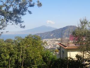 Gli Ulivi Agriturismo, Agriturismi  Sant'Agnello - big - 92