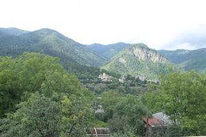 Akaki's Guesthouse, Penzióny  Borjomi - big - 10