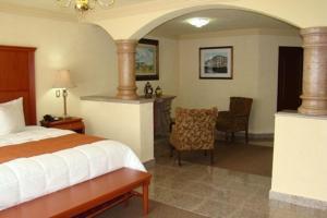 Quinta del Rey Hotel, Hotels  Toluca de Lerdo - big - 18