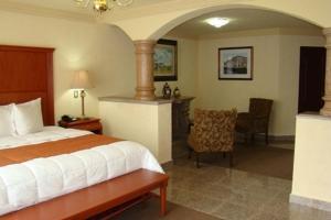 Quinta del Rey Hotel, Hotels  Toluca de Lerdo - big - 9