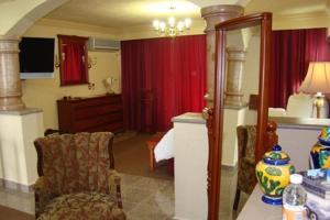 Quinta del Rey Hotel, Hotels  Toluca de Lerdo - big - 14