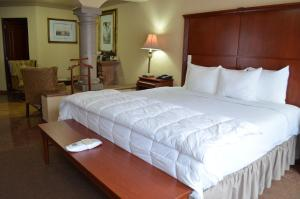 Quinta del Rey Hotel, Hotels  Toluca de Lerdo - big - 64