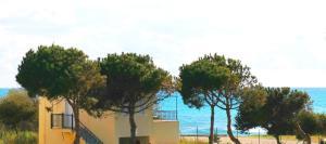 Hostales Baratos - Romanos Beach Villas