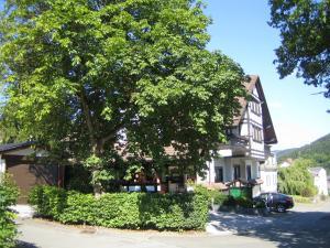 Hotel Pension Garni Berghaus Sieben - Katzenbach