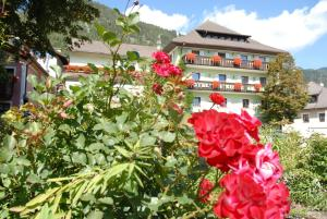 Auberges de jeunesse - Hotel Gasthof Zur Linde