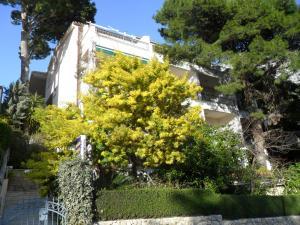Apartments Staničić, Apartments  Brela - big - 142