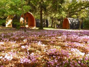 Location gîte, chambres d'hotes Cabanes des châteaux dans le département Loir et Cher 41