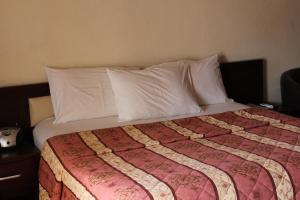 Leisure Lodge Hotels, Hotels  Freetown - big - 56