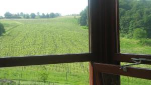 Tourist Farm Joannes - Accommodation - Mariborsko Pohorje