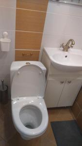 Apartment Vishnevskogo 2, Ferienwohnungen  Kaluga - big - 19