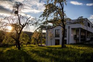 Hewen Apartments - Biesendorf