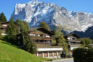 Apartment Schönegg 3.5 - GriwaRent AG - Hotel - Grindelwald