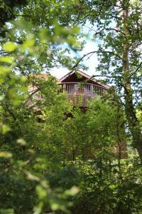 Location gîte, chambres d'hotes Cabane Rouge-Gorge dans le département Dordogne 24