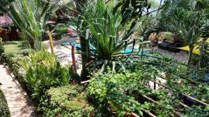 Hotel Napoleon Lagune, Hotels  Lomé - big - 107