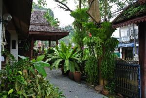 Phang-Nga Inn Guesthouse - Ban Thap Riang (1)