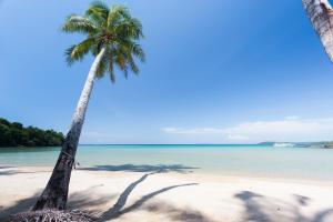 A-Na-Lay Resort Koh Kood, Üdülőtelepek  Kut-sziget - big - 38