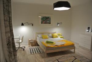 Apartment Tsentralnaya - Pikino