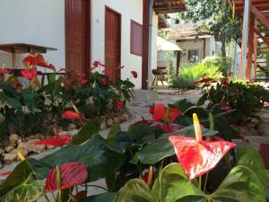 Pousada Flor de Debora - Sao Jorge