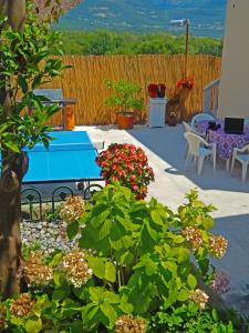 Apartment Anja, Apartments  Tivat - big - 9