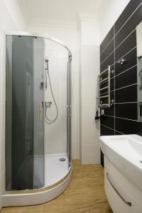Partner Guest House Khreschatyk, Appartamenti  Kiev - big - 47