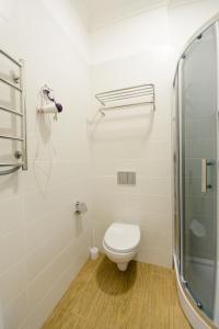 Partner Guest House Khreschatyk, Appartamenti  Kiev - big - 104