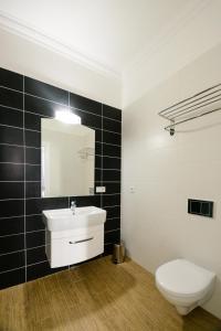 Partner Guest House Khreschatyk, Appartamenti  Kiev - big - 94