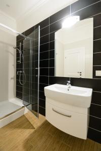 Partner Guest House Khreschatyk, Appartamenti  Kiev - big - 12