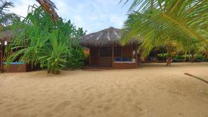 Mangrove Beach Cabana