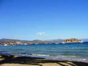 Vetsa's Experience Argolida Greece