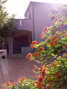 Appartamenti Santa Margherita - AbcAlberghi.com