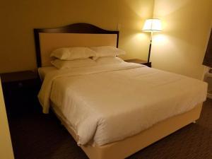 7 West Motel.  Fotka  8