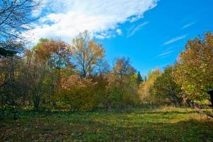Kolhidskie Vorota Usadba, Farm stays  Mezmay - big - 267
