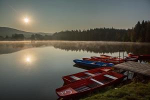 Orea Resort Devět Skal Vysočina, Hotely  Sněžné - big - 37