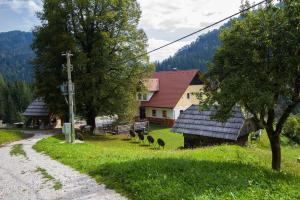 Tourist farm Gradišnik