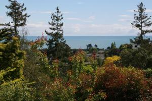 Eleanor Gorrie B & B, Bed and Breakfasts  Nelson - big - 4