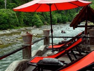 obrázek - EcoTravel Cottages Bukit Lawang