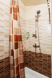 Dom Romanovykh Mini-Hotel, Hotely  Petrohrad - big - 67