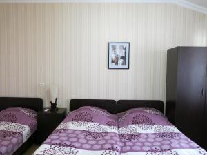 Nick&David INN, Мини-гостиницы  Боржоми - big - 26