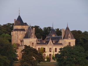 Demeure Chateau de Ternay